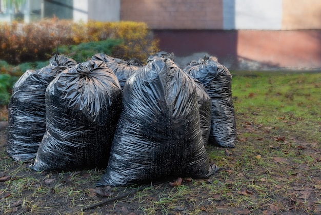 Schwarze plastiktüten voller herbstblätter. saisonale reinigung der straßen der stadt von laub.