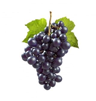Schwarze trauben mit grünem blatt