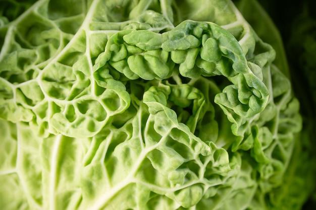 Schwarzer grünkohlsalat lässt nahaufnahme. italienischer oder toskanischer kohl hautnah.