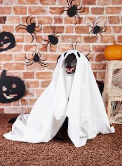 Schwarzer hund im geisterkostüm