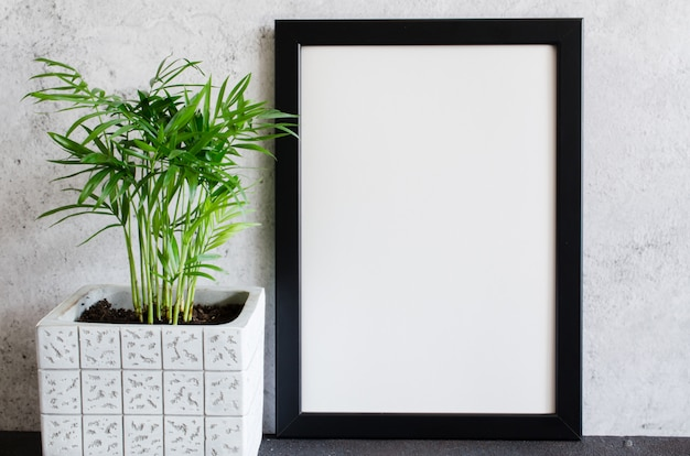 Schwarzer plakat- oder fotorahmen und schöne pflanze im betontopf