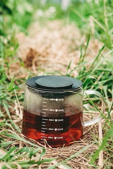 Schwarzer tee in einer transparenten teekanne auf grünem gras. gesunder heißer tee in der natur. teekanne hautnah. kondensat auf dem glas .erfrischender tee. das flüssigkeitsvolumen in der teekanne markieren. vertikaler rahmen