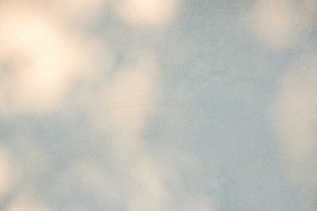 Schwarzer und weißer abstrakter hintergrundtexturierer des schattenblattes auf einem konkreten wal