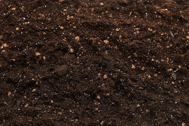 Schwarzes land für pflanze