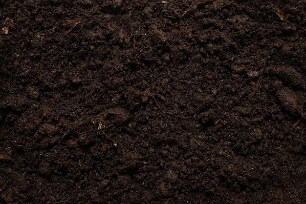 Schwarzes land für pflanzenhintergrund. draufsicht.