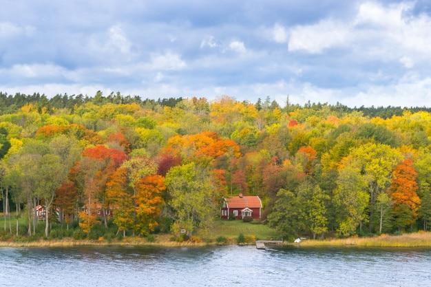 Schwedisches rotes haus surraunded durch bunte bäume und tiefen himmel. herbst