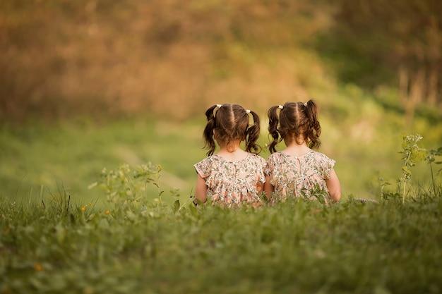 Schwestern lehnen sich zum betrachter zurück. zwillinge, die in der natur spielen. kleine mädchen spielen in der natur. mädchen mit pferdeschwänzen sitzen auf dem gras