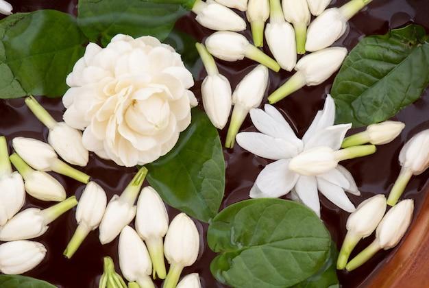 Schwimmende jasminblumen und grüne blätter im wasser auf hölzerner schüssel lokalisiert auf weißer .top ansicht, flache lage.