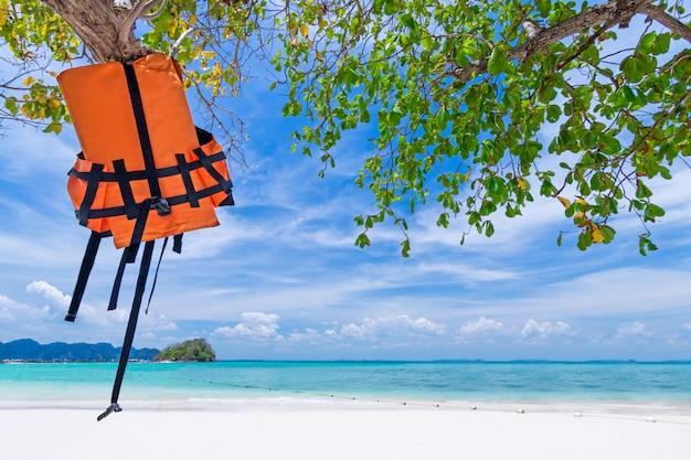 Schwimmwestejacke, die am baum am schönen strand hängt Premium Fotos