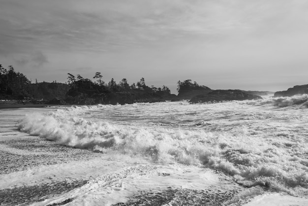 Seafoam am strand, pacific rim nationalparkreservat, tofino, vancouver island, britisch-kolumbien,