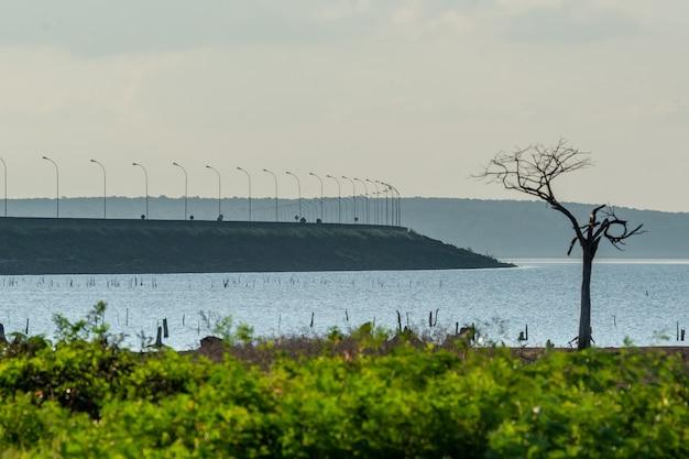 See des itaipu-staudamms mit aufgetauchten trockenen bäumen foz do iguacu parana-staat brasilien am 19. mai 2015