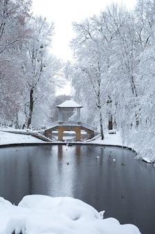 See in der nähe der chinesischen brücke im park oleksandria belaya tserkov ukraine