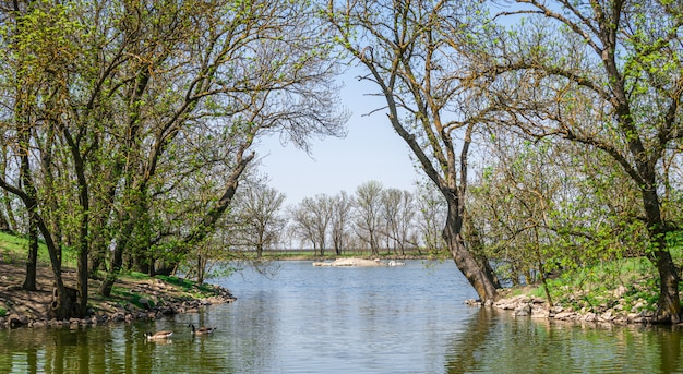 See in der reserve askania-nova in der ukraine