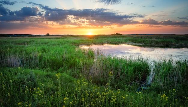 See unter grünem gras bei sonnenuntergang