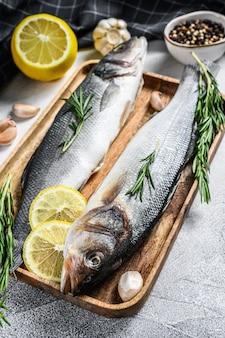 Seebarschfisch mit kräutern, rohem wolfsbarsch.