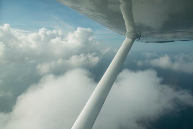 Seeflugzeugfliegen im himmel, schacht-inseln, honduras