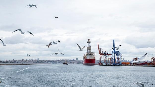 Seehafen mit festgemachtem frachtschiff bei bewölktem wetter mit fliegenden möwen, türkei