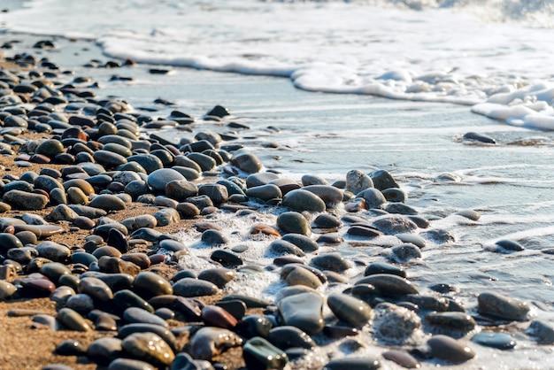 Seekiesel wuschen sich durch die wellen bei sonnenaufgang