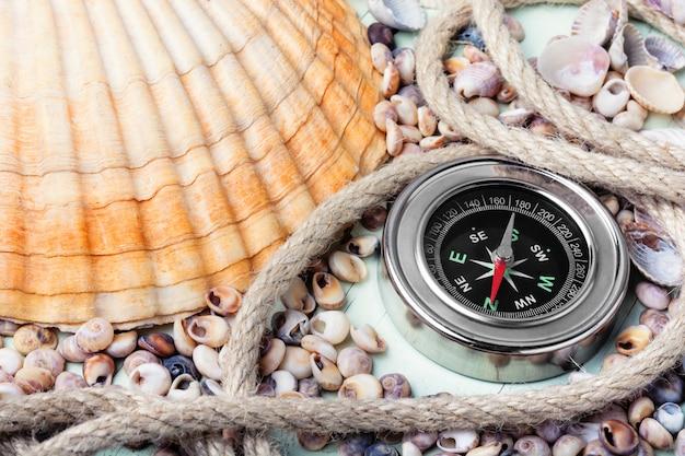 Seekompass und muscheln