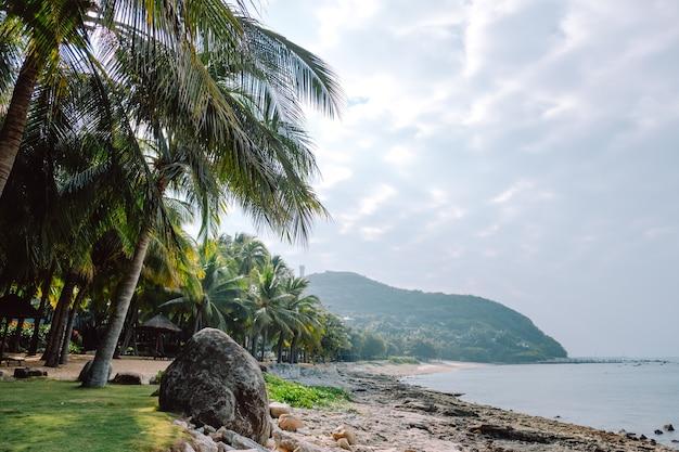 Seelandschaft, küste auf einer tropischen insel, palmen und wolken, riffstrand