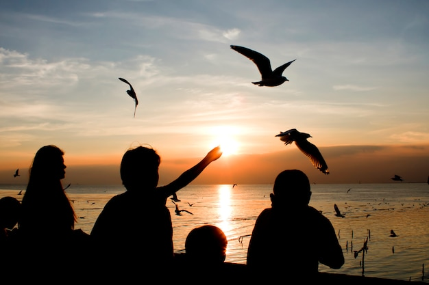 Seemöwen, die den abendsonnenuntergang im meer fliegen