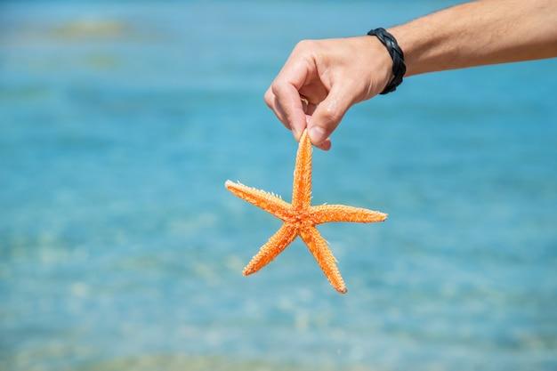 Seestern am strand in den händen eines mannes