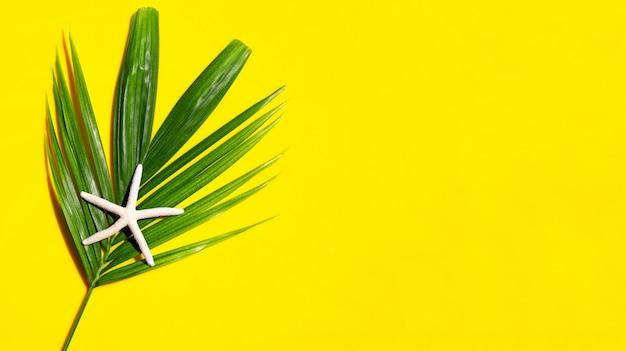 Seestern auf tropischen palmblättern auf gelbem hintergrund. sommerferienkonzept genießen. draufsicht