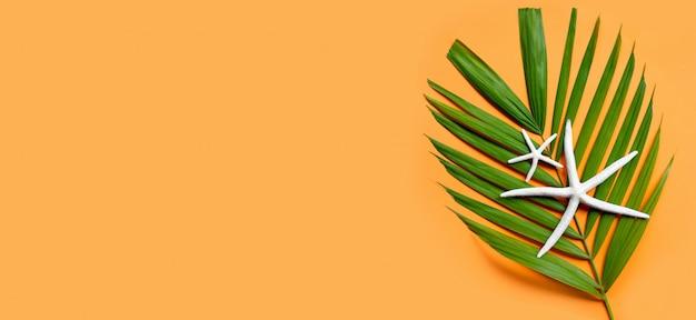 Seestern auf tropischen palmblättern auf orange hintergrund. sommerferienkonzept genießen.