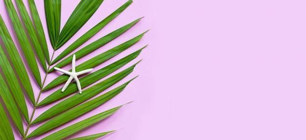 Seestern auf tropischen palmblättern auf rosa hintergrund. sommerferienkonzept genießen. speicherplatz kopieren