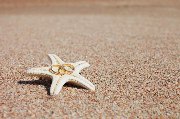 Seestern mit eheringen am strand