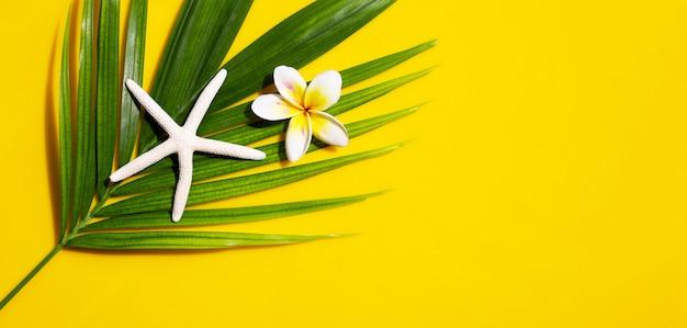 Seestern mit plumeria oder frangipani-blume auf tropischen palmblättern auf gelbem hintergrund. sommerferienkonzept genießen. draufsicht