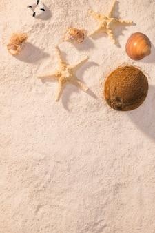 Seestern, muscheln und kokosnuss am strand