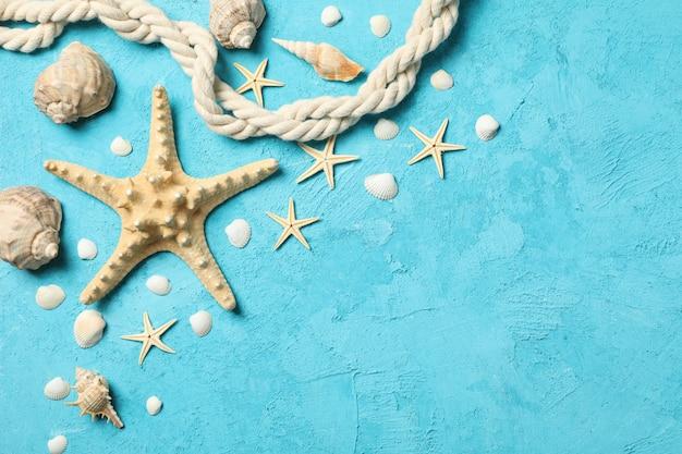 Seestern, seil und muscheln auf blau, platz für text