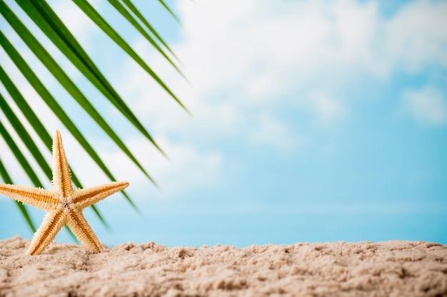 Seesterne am strand. entspannungshintergrund.