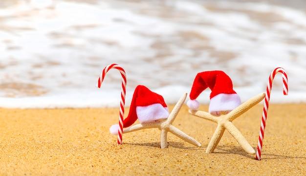 Seesterne am strand mit weihnachtsmützen und zuckerstangen