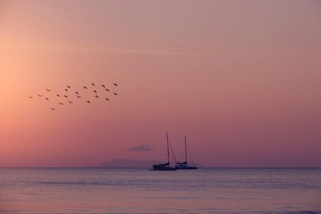 Segelboot im meer mit vögeln des sommerhintergrundes.