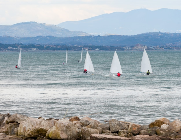 Segelbootrennen auf dem meer.