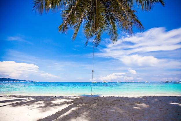 Seilschaukel auf großer palme am weißen sandigen strand