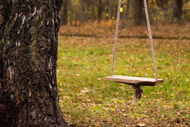 Seilschaukel, die an einer birke in der landschaft im herbst hängt
