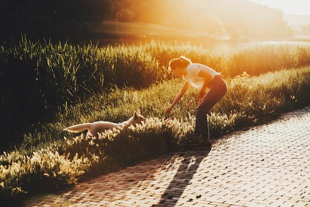 Seitenansicht der jungen frau, die mit lustigem hund spielt, der im parkgras während des guten spaziergangs am sonnigen tag steht