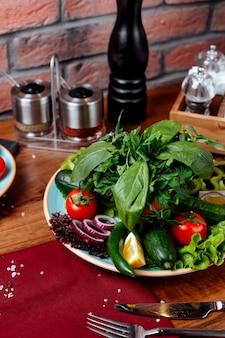 Seitenansicht der roten zwiebel und der kräuter der frischen gemüsetomatengurke auf einem holztisch