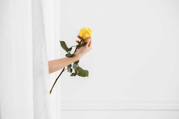 Seitenansicht der verführerischen frau, die mit einem frühlingsblumen- und kopienraum aufwirft