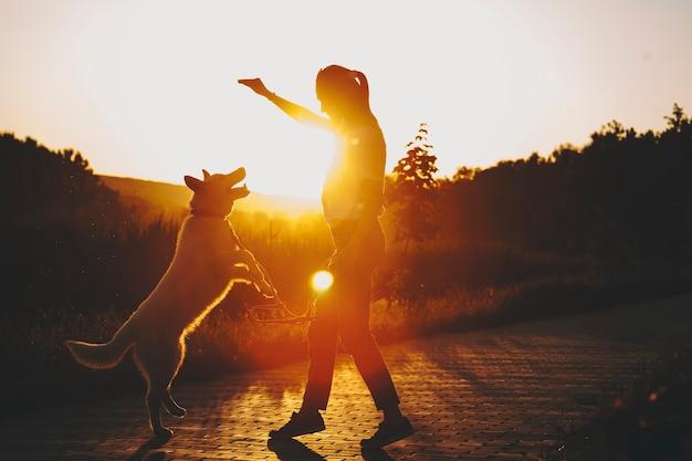 Seitenansicht der weiblichen silhouette, die arm oben und hund hält, die auf hinterbeinen stehen und zur hand des besitzers bei sonnenuntergang auf hintergrundbeleuchtung von gras und bäumen strecken
