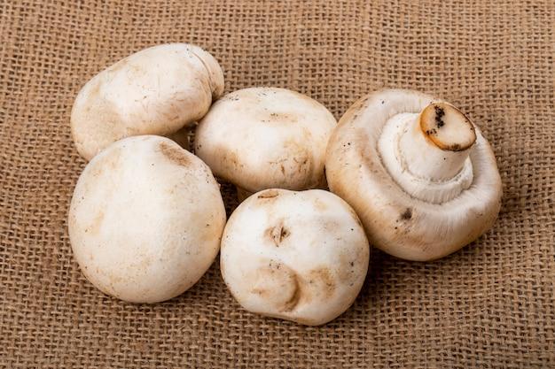 Seitenansicht des champignons der frischen pilze auf sackleinenhintergrund