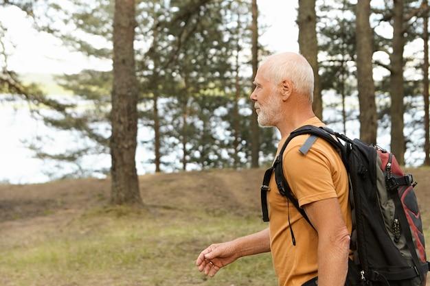 Seitenansicht des selbstbestimmten aktiven kahlen männlichen rentners, der rucksack trägt, während er allein in kiefernholz wandert. bärtiger kaukasischer pensionierter mann mit rucksackwanderung entlang der touristischen route im wald