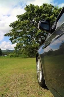 Seitenansicht eines grauen autos auf grünem gras mit großem baum und blauem himmel im sommer