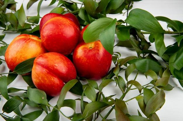 Seitenansicht von frischen reifen nektarinen mit grünen blättern auf weiß