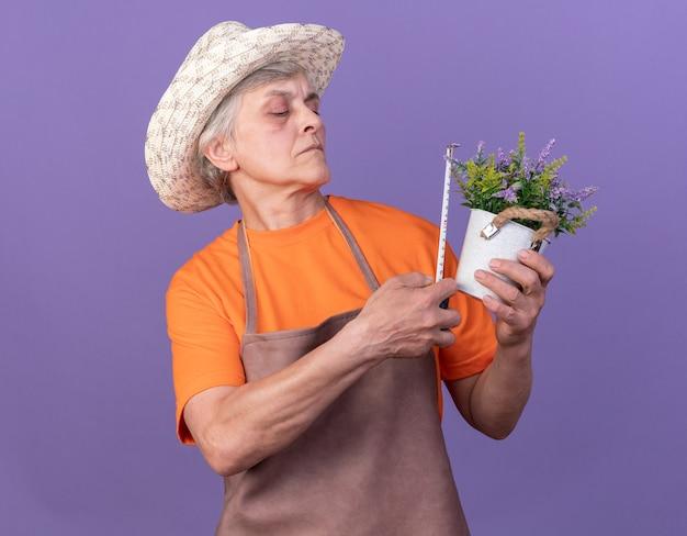 Selbstbewusste ältere gärtnerin mit gartenhut, die blumentopf mit maßband misst