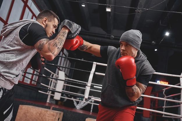 Selbstbewusster fokussierter athlet in boxhandschuhen, der den rechten haken schlägt. junge boxer trainieren auf boxpfoten, während sie in der schwarzen boxhalle stehen