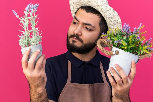 Selbstbewusster junger kaukasischer männlicher gärtner mit gartenhut, der blumentöpfe hält und betrachtet, die auf rosa wand mit kopienraum isoliert sind?